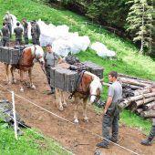 Milizsoldaten greifen zur Schaufel