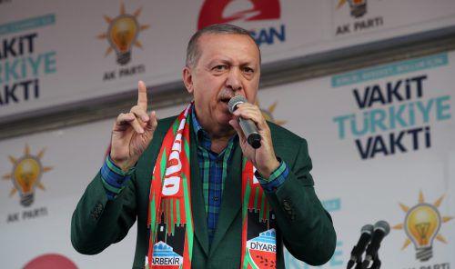 Für Präsident Erdogan sind die Stimmen der Auslandswähler wichtig. reuters