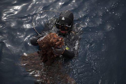 Geisternetze sind oft tödliche Fallen für Meerestiere und hinterlassen zudem unzählige Plastikteilchen im Wasser. AP