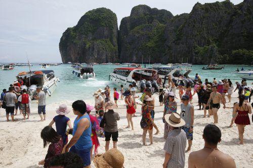 Maya Bay soll sich in den vier Monaten vom Touristenansturm erholen. ap