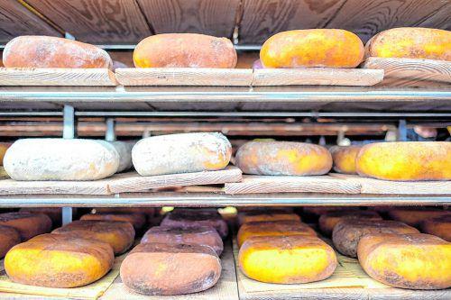 Nach der Konservierung in Salzlage wird der Käse bis zu zwölf Monate gelagert.