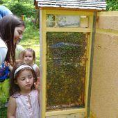Expertenvortrag über Gesundes aus dem Bienenstock
