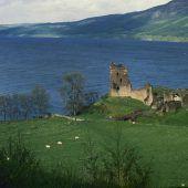 Forscher wollen alle in Loch Ness lebenden Wesen identifizieren