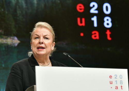 Auf Sozialministerin Beate Hartinger-Klein wartet eine große Herausforderung. apa
