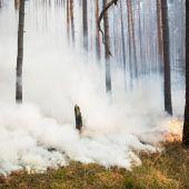 Weltweiter Kampf gegen das Feuer