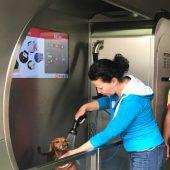 In Salzburg kommen schmutzige Hunde in die Waschanlage
