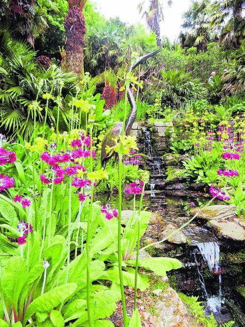 Der Trebah Garden ist ein subtropisches Gartenparadies.