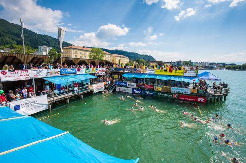 Der Wasserball-Bodenseecup hat sich in den vergangenen Jahren zu einem Traditionsturnier entwickelt. Sams