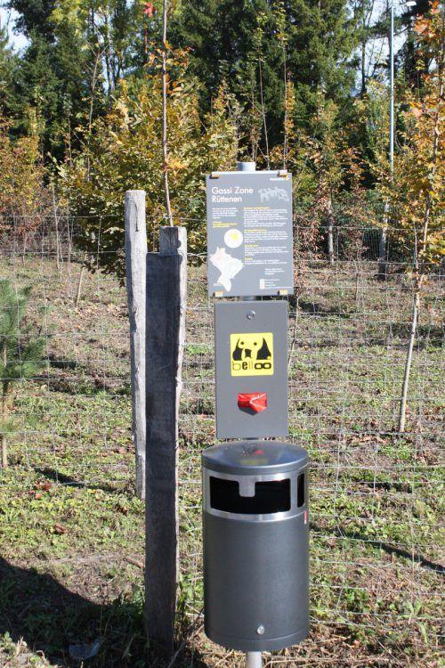Die Gassizonen am Rande der Leinenzwangzonen wurden von vielen Hundehaltern kritisiert. VN/Schweigkofler