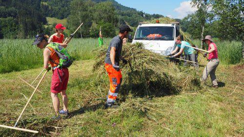 Die heimischen Naturschutzgebiete liegen im Fokus der Vielfalterwoche, die noch bis einschließlich Samstag, 21. Juli, dauert. CEG