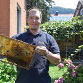 Vom Superorganismus Biene fasziniert