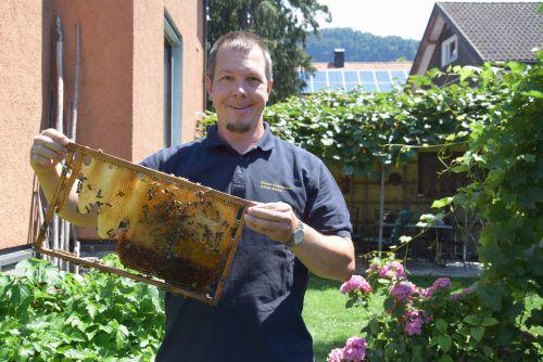 Drei Bienenvölker hat der begeisterte Jungimker Markus Spiegel derzeit in seiner Obhut. hotz
