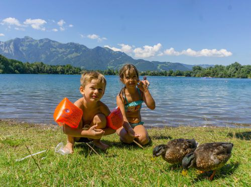 Es schaut lieb aus, wenn Kinder Enten füttern. Aber das Füttern von Wasservögeln ist problematisch. VN/Paulitsch