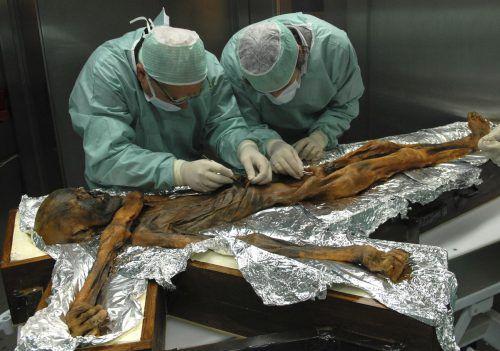 Forscher haben nun den Mageninhalt von Ötzi analysiert – und schließen damit auf die Ernährung der Menschen vor 5300 Jahren. AP