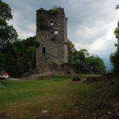 Ruine Montfort wird für Vermessung freigelegt