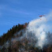Die Waldbrandgefahr wächst täglich