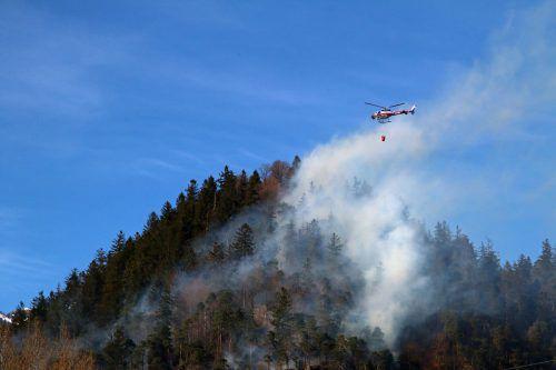 Im Falle eines Waldbrands stehen in Vorarlberg gleich mehrere Hubschrauber zur Bekämpfung aus der Luft bereit. vol.at/Pletsch