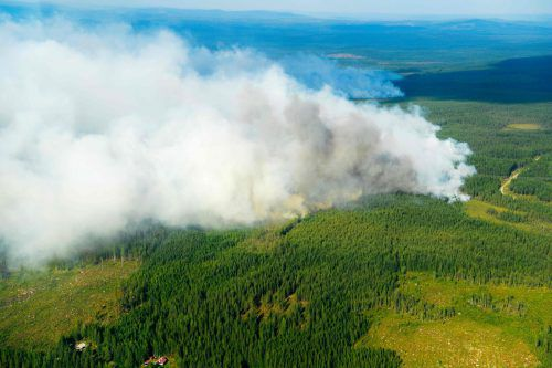 In der schwedischen Kommune Ljusdal ist Brandfront 55 Kilometer lang. AFP