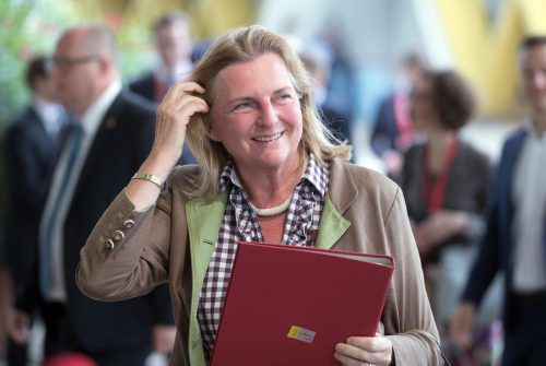 Karin Kneissl sprach über Österreichs Prioritäten während des EU-Ratsvorsitzes. apa