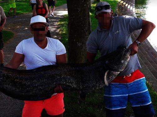 Stolz präsentierten die beiden Angler ihren großen Fang. Und handelten sich damit gleichzeitig immense Schwierigkeiten ein. YOUTUBE
