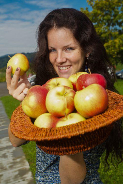 Wer beispielsweise Äpfel hat oder sucht, ist bei der Obstbörse goldrichtig. VN/Steurer