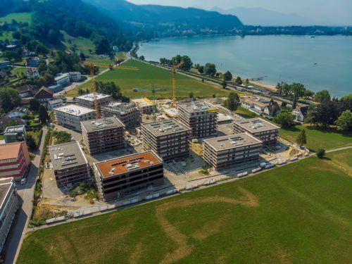 """Das """"Seedomizil"""" wächst in die Höhe: Auf dem Areal entstehen 13 Mehrfamilienhäuser mit 206 Wohnungen. VN/Paulitsch"""