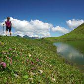 Viele Wanderer lieben diesen Sommer