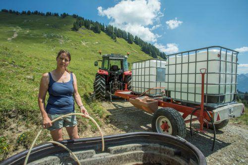 Der Klimawandel war auch im Hitzesommer 2018 in Vorarlberg deutlich spürbar. Wassernot auf der Alpe Alpila bei Hildegard Burtscher.