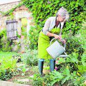 Wie viel Wasser für den Garten?