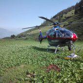 Auf Alpe bei Riezlern  in den Tod gestürzt