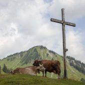 Frühes Ende des Alpsommers