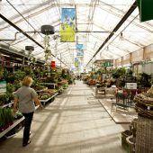 Hitze setzt auch Gartencentern zu. d1