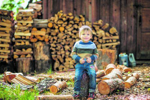 Jetzt kommen ideale Tage, um Brennholz einzulagern.foto: shutterstock
