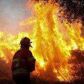 Entspannung bei Bränden in Portugal und Spanien