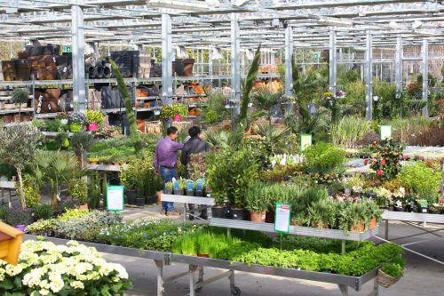 Viele Hobbygärtner gaben sich geschlagen. In den Gartencentern spürte man das bei der Kundenfrequenz.VN/Hb