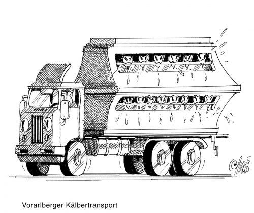 Vorarlberger Kälbertransport
