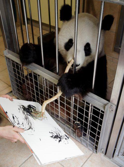 Wenn Yang Yang Lust hat, malt sie an einem Gitter hinter den Kulissen. Reuters