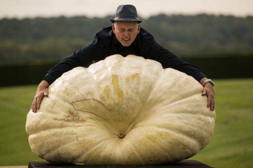 319,8 Kilogramm brachte dieser Riesenkürbis auf die Waage. AFP