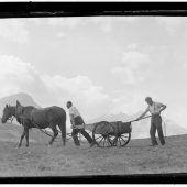 Gefährliche und mühevolle Bauernarbeit