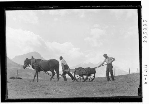 Ausbringung von Dünger in Schröcken im Jahr 1942. Im Hintergrund Mohnenfluh und Braunarlspitze.