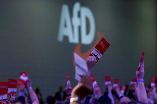 Die AfD profitiert von der Krise um den bisherigen Verfassungsschutzpräsidenten Maaßen. reuters