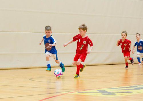 Die FCD-Ballschule startet wieder in die neue Saison.