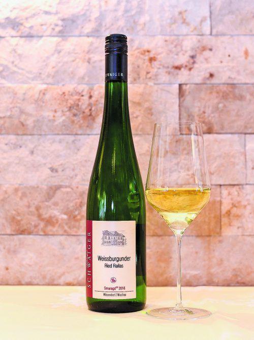 Ein kräftiger, gehaltvoller Weißwein mit milder Säure.VN/Oliver lerch