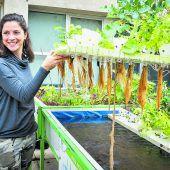 Urbanes Gärtnern in Bioqualität