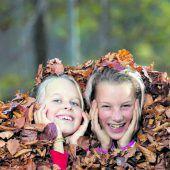 Der Herbst hat jetzt Einzug gehalten