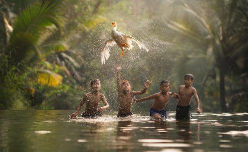 Kinder in Macau jagen eine Gans.Alexandrino Lei Airosa