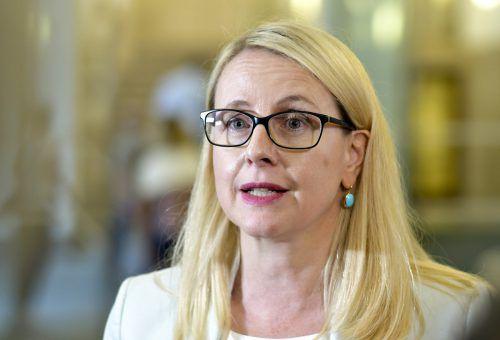 Schramböcks Ressort verwies auf das ÖVP-FPÖ-Regierungsprogramm. APA