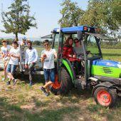 Vorderländer Integrationsprojekt produziert 1200 Liter Most