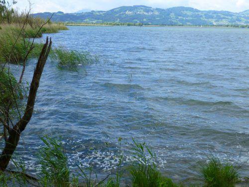 So schön ist der Rhein, wenn das Wasser und seine Ufer sauber sind. Jetzt wird seiner Verschmutzung der Kampf angesagt.vn