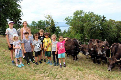 Streifzug durch die Tier- und Pflanzenwelt im Rahmen des Leiblachtaler Ferienprogramms: Besuch auf dem Bauernhof Yak in Halden. bms